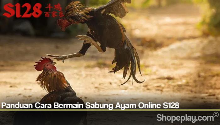 Panduan Cara Bermain Sabung Ayam Online S128
